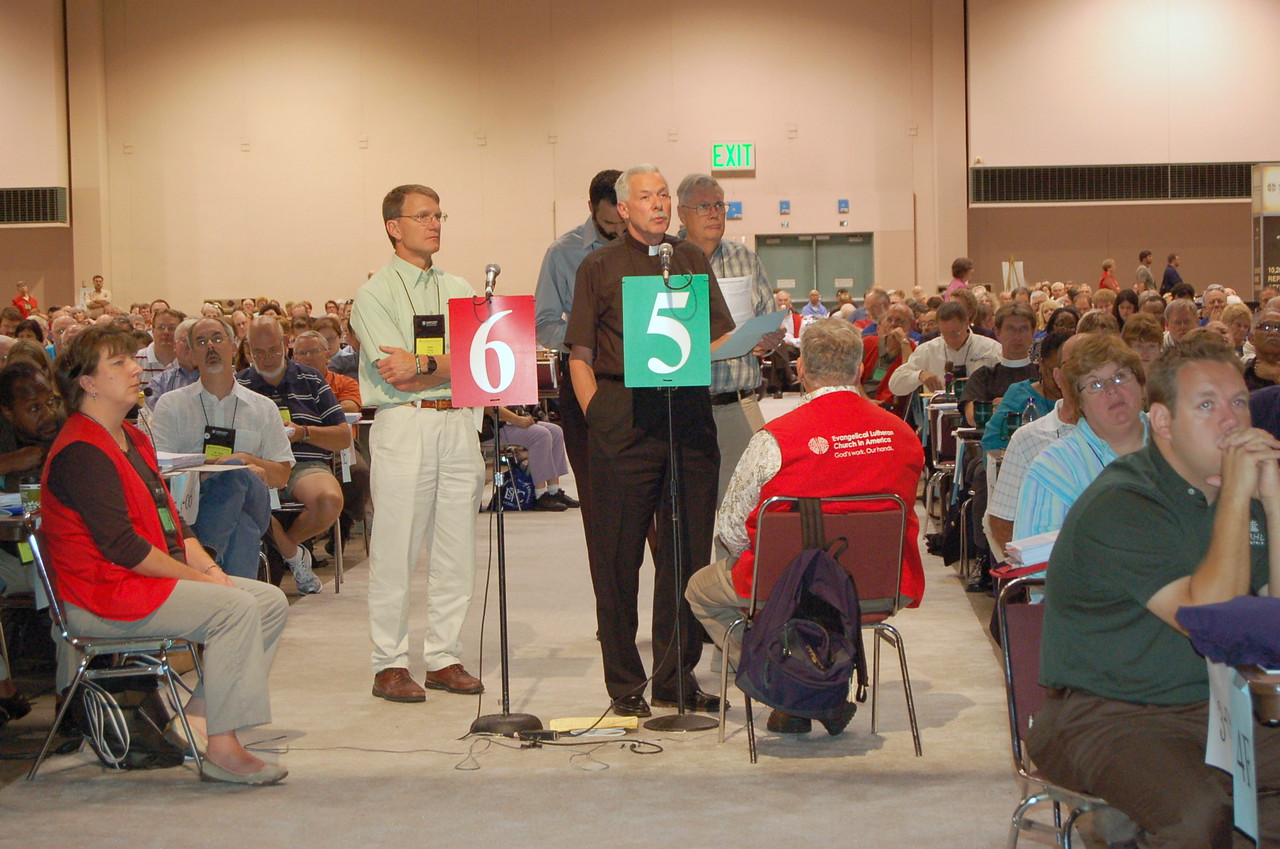 Voting member speaks in favor of the Healthcare Reform resolution.