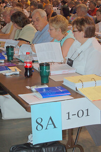 Voting members from the Northwestern Pennsylvania (8A) synod.