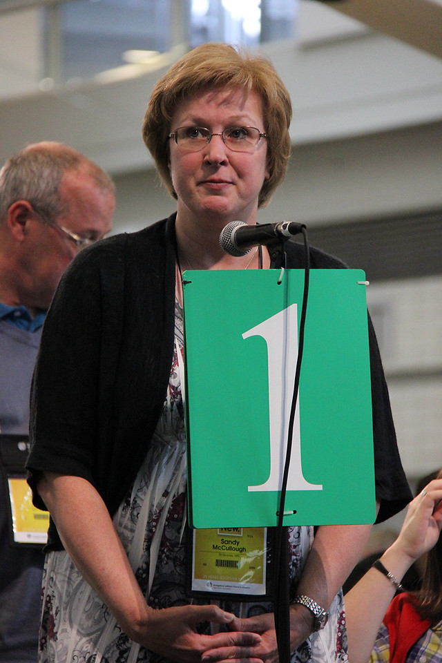 A voting member speaks at the plenary.