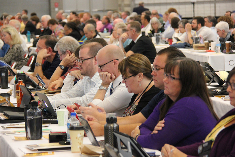 Voting members participate in the plenary.
