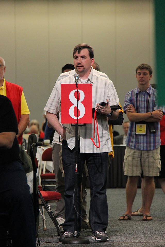 Voting members speak at the plenary.