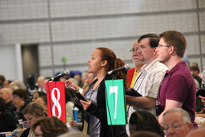Voting members speak at the plenary.