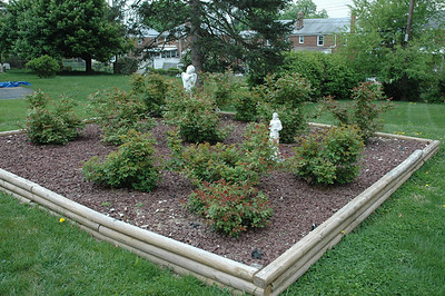 Chris Pollock and his father, John Pollock, built this rose garden next to the sanctuary at Good Shepherd Lutheran Church, Harrisburg (Paxtang), Pa.