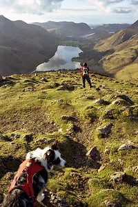 Fleetwith Pike Summit