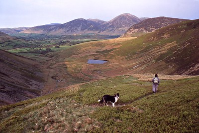 On the descent from Blake Fell to Maggie's Bridge Featuring Gael