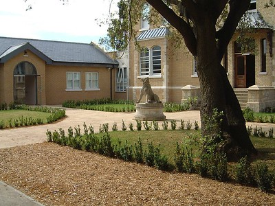 The entrance courtyard and stone dog, relocated from the rear garden into this prominent position, with new box hedging around the Holm Oak.