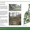 022 Garden Porfolio_Page