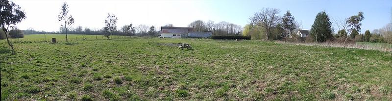 ELD pub garden (10)