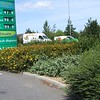 Image of the Ely BP Garage, post development with maturing landscape scheme.