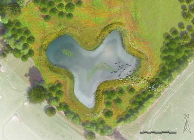 005 ELD Kelvedon Lake