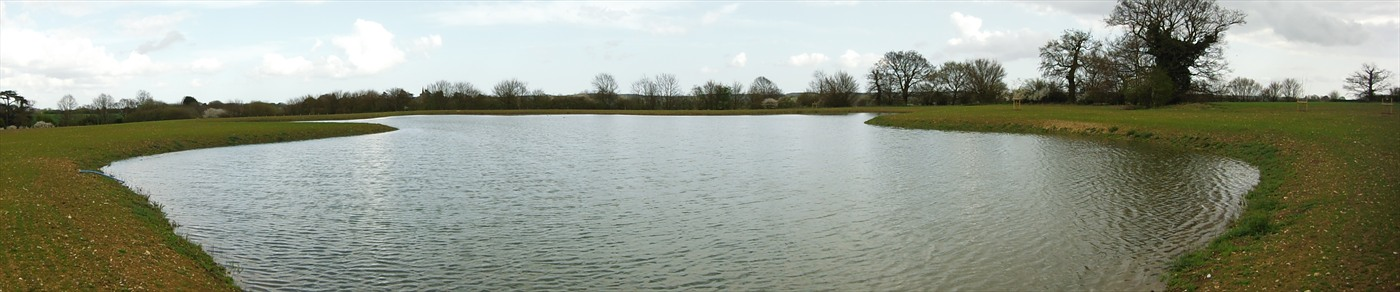 ELD Pond, Essex