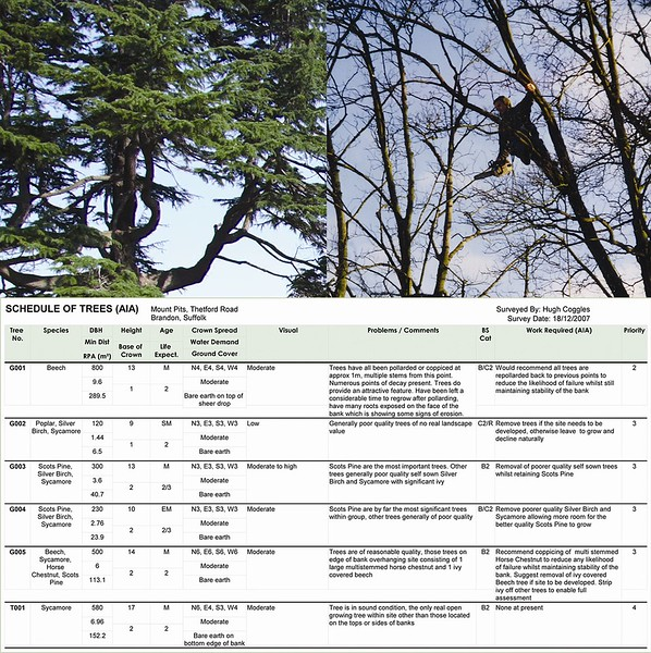 ELD sub-consultants survey trees in accordance with BS 5837: 2012, to ascertain arboricultural implications in relation to development and construction, with recommendations for mitigation.