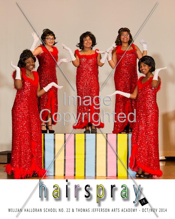 8x10 RED DYNAMITES GDVH8312-1