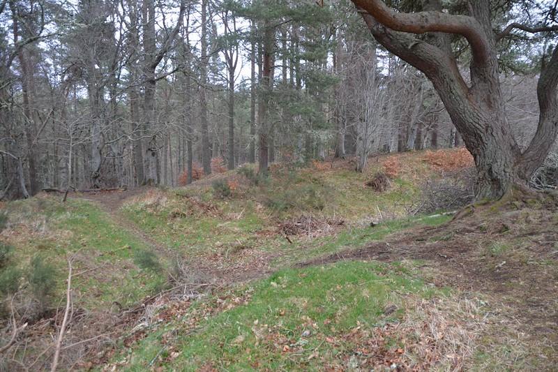 Craig Phadrig Vitrified Fort