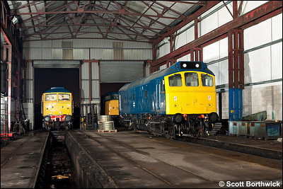 25321 stands inside the shed at Swanwick with 45133 & 47401 'North Eastern' for company on 12/12/2009.