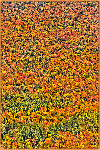 Fall color viewed from Mount Jo summit