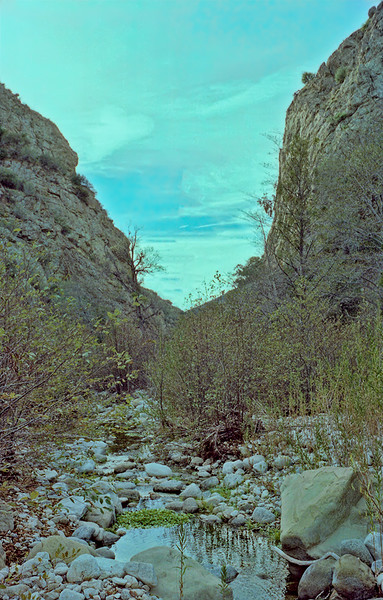 Alder Creek Canyon heading up Alder Creek from Alder-Sespe to Shady Camp, 12/1986.