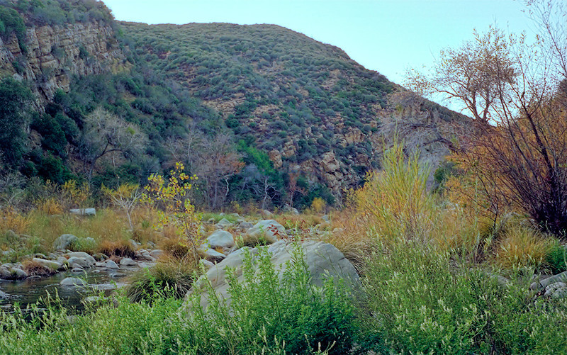Looking up Alder Creek at the Alder Creek - Sespe Creek confluence, 12/1986. There was no suitable area to make much of a camp here and any trace of the old Alder-Sespe camp had been obliterated. This picture was scanned from a negative recovered in August of 2011.