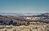Looking over the Cuyama Valley, somewhere below Santa Barbara Portrero on the Big Pine Buckhorn Fire road, 19 Feb, 1988.