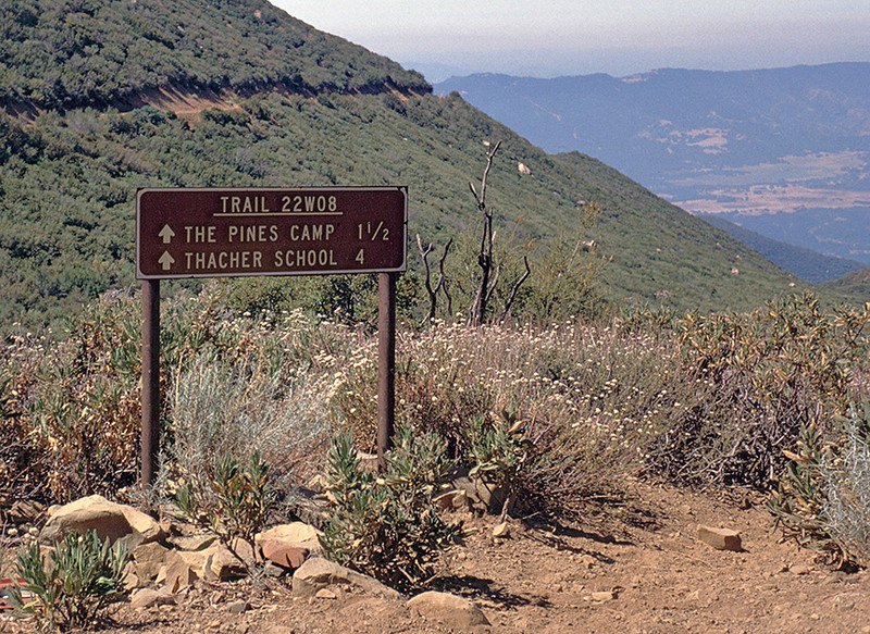 Intersection of the Horn Canyon Trail with the Sisar Fire Road, 1986. By 1986 the fence was gone, probably taken down during the Wheeler Fire in 1985.