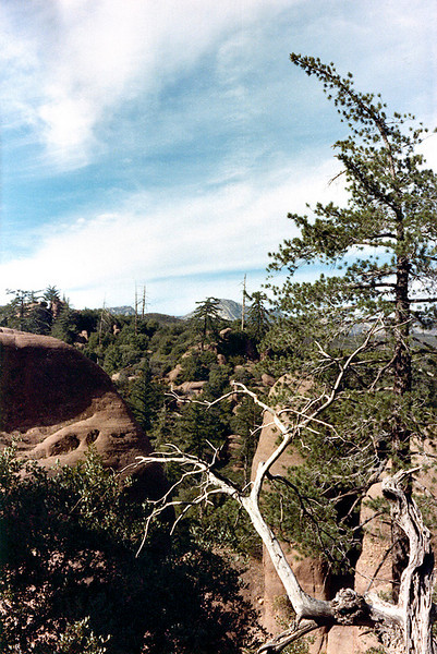 View from Bluff Camp reached via East Fork Santa Paula Creek, 12-24-1985