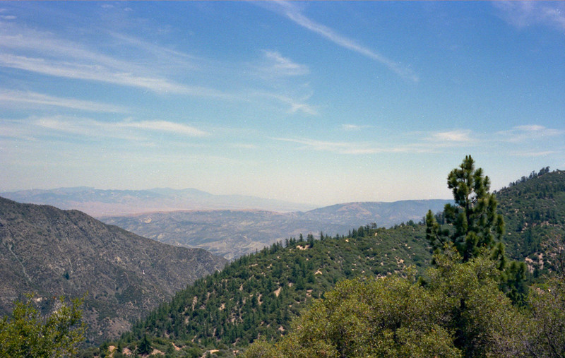 From the Buck Creek trail starting from a mile short of Hardluck camp, 1983.