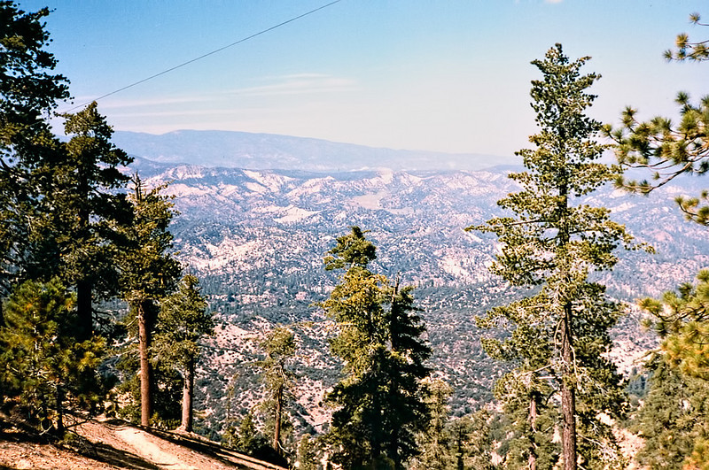 View toward Mount Pinos from the Thorn Point trail, prior to 1984. The wire across the upper left corner of this shot went up to the tower from the trail head below.