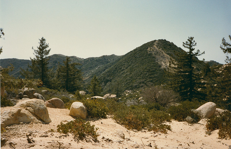 Looking to Divide Peak, April 1984. No pictures from the peak survive, although I remember very clearly finishing the hike. Looking at new maps I see an OHV road going to the summit of Divide Peak from the direction opposite to this. I do not remember this road at all.