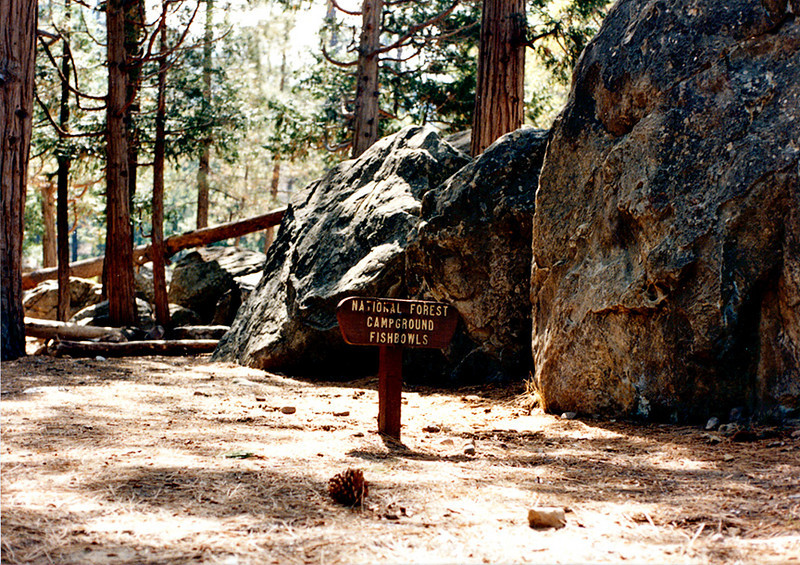 Fishbowls camp, Pine Mountain, 11/1984. The headwaters of Piru creek is here. I think this burned some years ago.