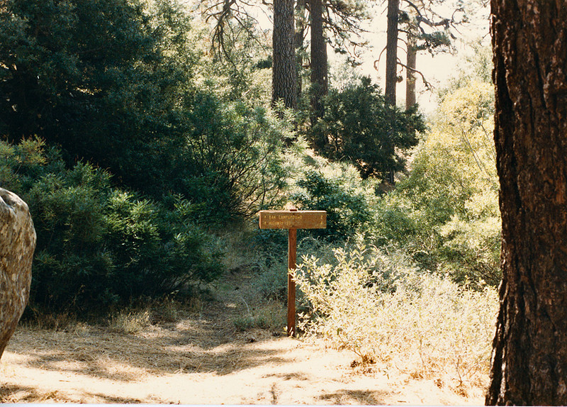 Trail into Chorro Grande Camp and trail sign. August, 1985.
