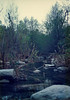 South Fork, Sisquoc River, 26 March, 1988.
