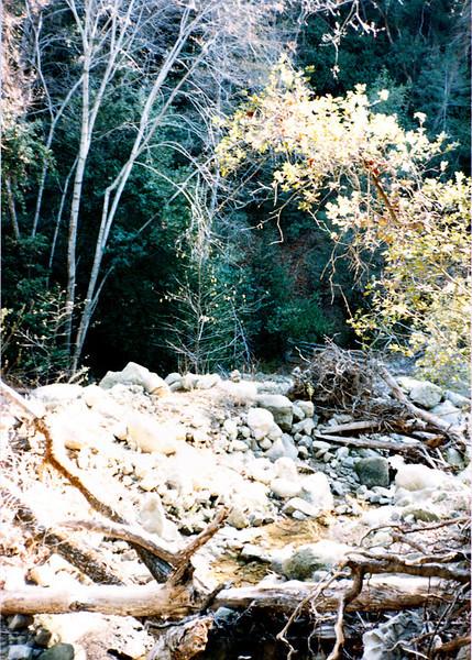 Creek bed near Cienega camp, 01/1985