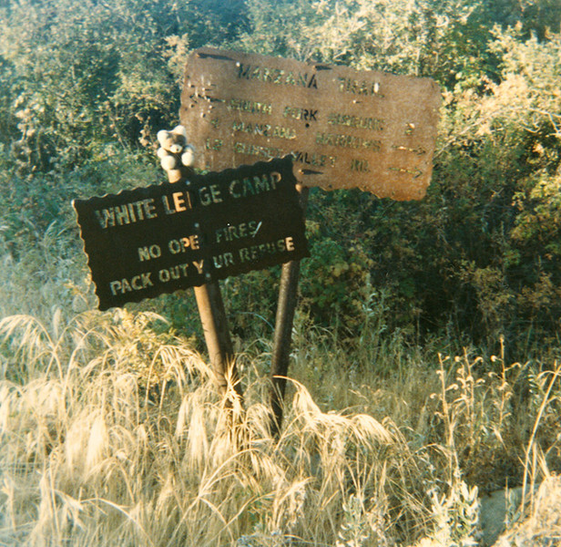 White Ledge Camp Trail sign, 09/1985. I see the bear too, I just don't remember how it got on the signpost.