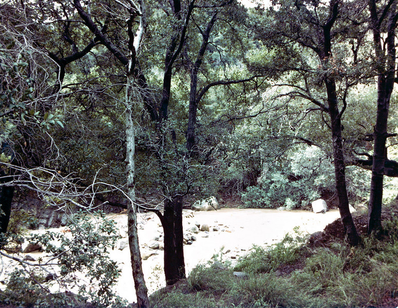 North Fork, Matilija Creek during heavy rains in 1978. 1978 actually had more rain than the infamous year 1969, just no single event as dramatic as the January, 1969 deluge and flood. I shot this with my Mamiya DTL 500 shortly before I purchased my Nikon FM.