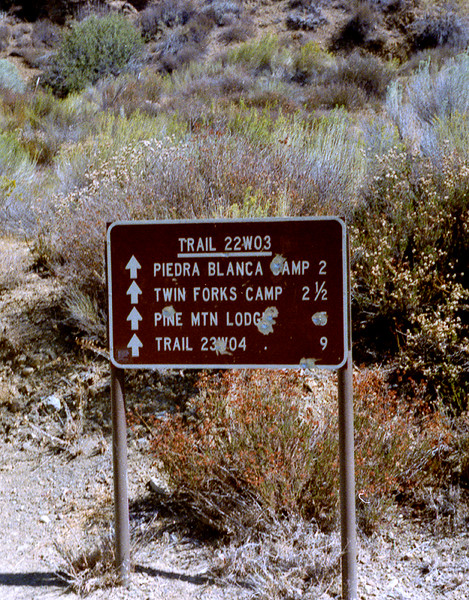 Trail sign, start of the Piedra Blanca Trail across the Sespe from Lion Camp (now the Piedra Blanca trail head). This was also the start of the historic Sespe Road. This sign is no longer in place. 1985.
