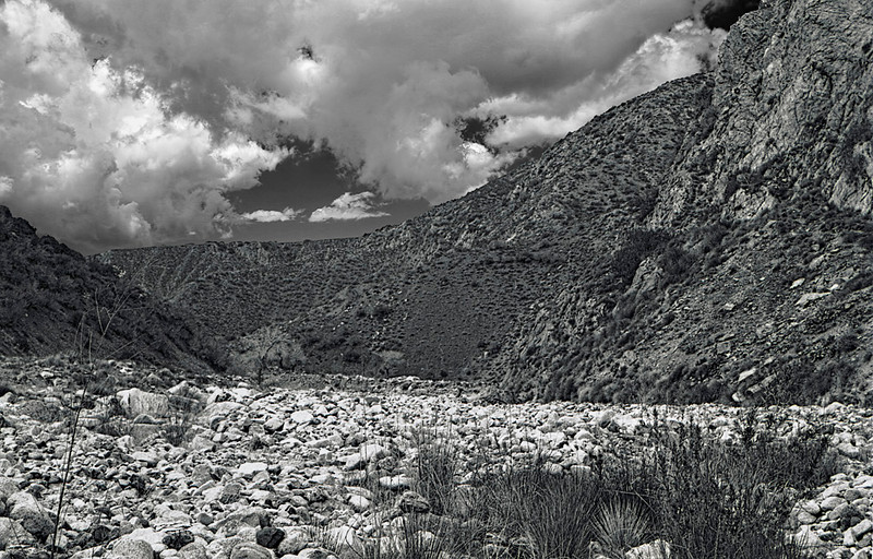 Sespe Hot Springs Canyon, 1979.  I shot a lot of black and white in the Southern Los Padres and recently discovered a few of my negatives from the 1970s and 1980s.