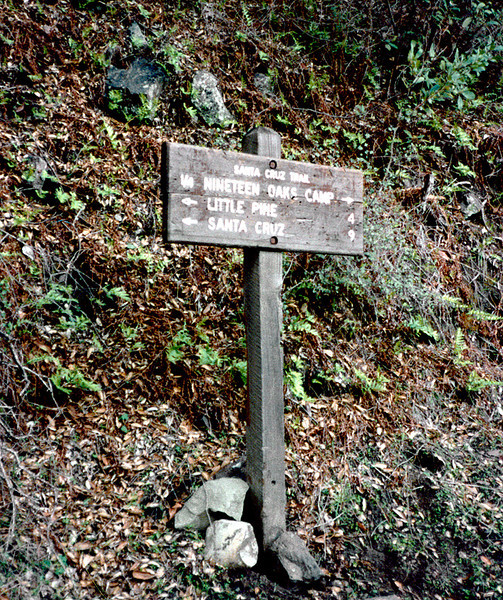 Old sign on the Santa Cruz trail a mile from the trailhead sign and register, 12/1984.