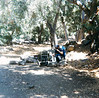 White Ledge Camp, 09/1985