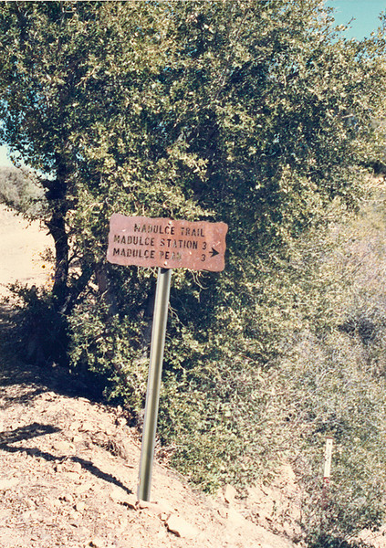 Junction, Buckhorn road and Madulce trail, Februrary 19, 1988.
