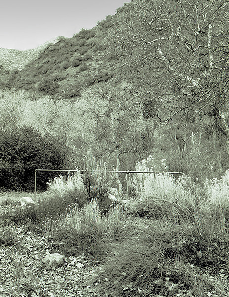 Hitching post in Hot Springs Canyon, 1983. This is not a classic subject for a photograph, but evidently I liked it and now I am glad I managed to retain the negative.