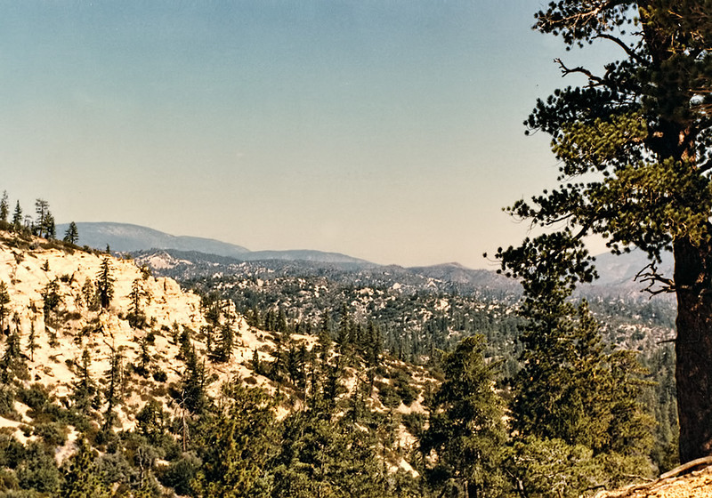 The canyon of Cedar Creek viewed from the ridge above Fishbowls camp, 11/1984.