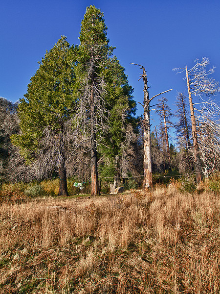 Madulce Cabin site, November 16, 2011.