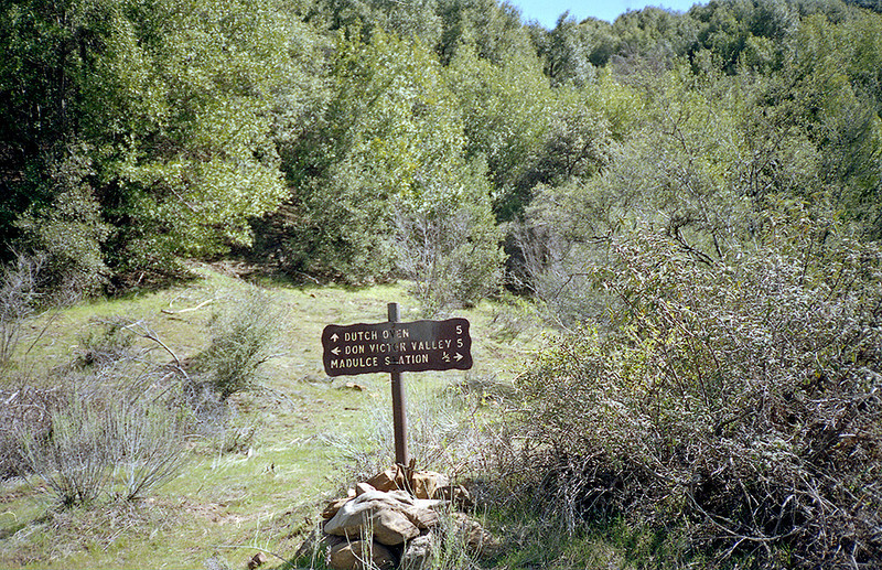 One half mile or so south of Madulce Cabin brought one to the Puerto Suelo - Don Victor trail junction. Certainly spending a comfortable night in the Cabin would help one attain the appropriate state of mind to tackle one or another of these routes. An alternative strategy was to turn around and spend another night in Madulce Cabin. Spring, 1983.