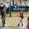 0421-babson-tourney_610