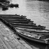 Rowboats On Thames - Richmond, London (May 2015)