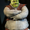 """Shrek: The Musical"""