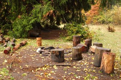 """Dodnes ovšem místo setkávání, ohniště, špalky pod stromem (""""mohutné smrky skýtají úkryt"""" a blabla)"""