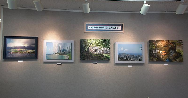 Ellis Rose Canon Photo Gallery -- October Exhibit (10/1-10/30/08)
