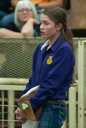 20190105_eosc_goats_showmanship-and-does456
