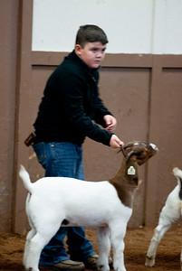 eosc_goats_20200104-1